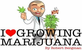 I love to grow marijuana
